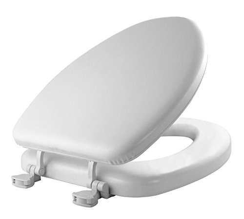 Pleasing 11 Best Toilet Seats For Sitting Comfortably Reviewed Dailytribune Chair Design For Home Dailytribuneorg