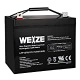 Weize 12V 75AH Deep Cycle Battery for Wayne...
