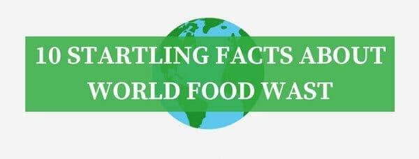 worlds food waste