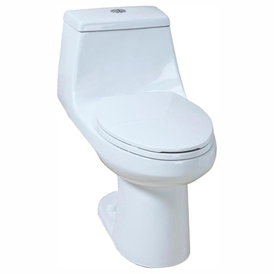 Glacier Bay #N2420 1-Piece High-Efficiency Dual Flush Elongated All-In-One Toilet