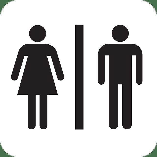 Restroom Commercial Toilet