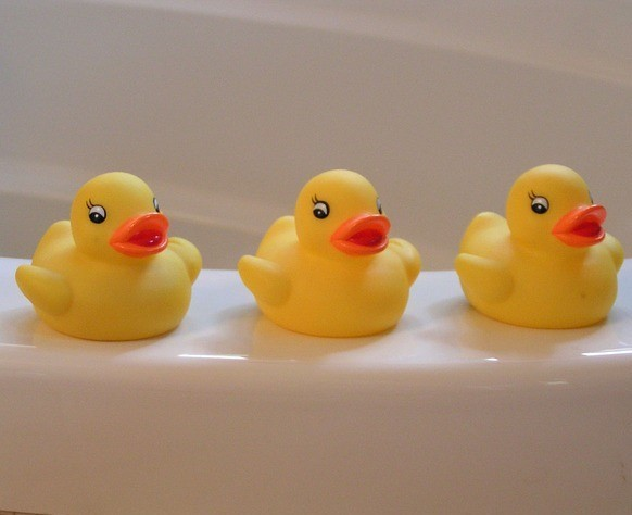 Rubber Duckies Child Safe